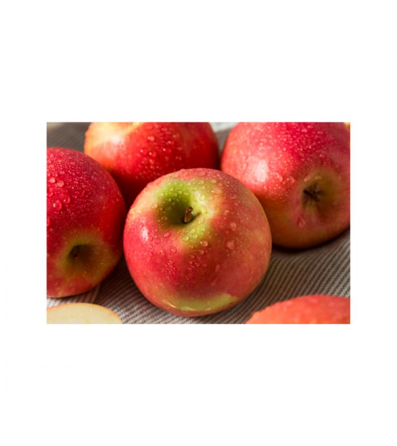 Pink Lady Apple  (each)
