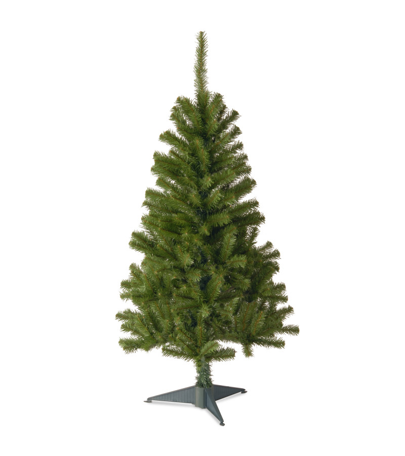 Canadian Fir Tree - 3ft