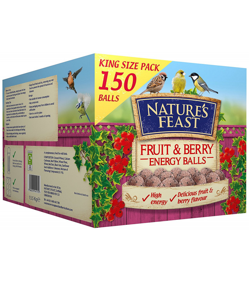 Nature's Feast Fruit & Berry Energy Balls