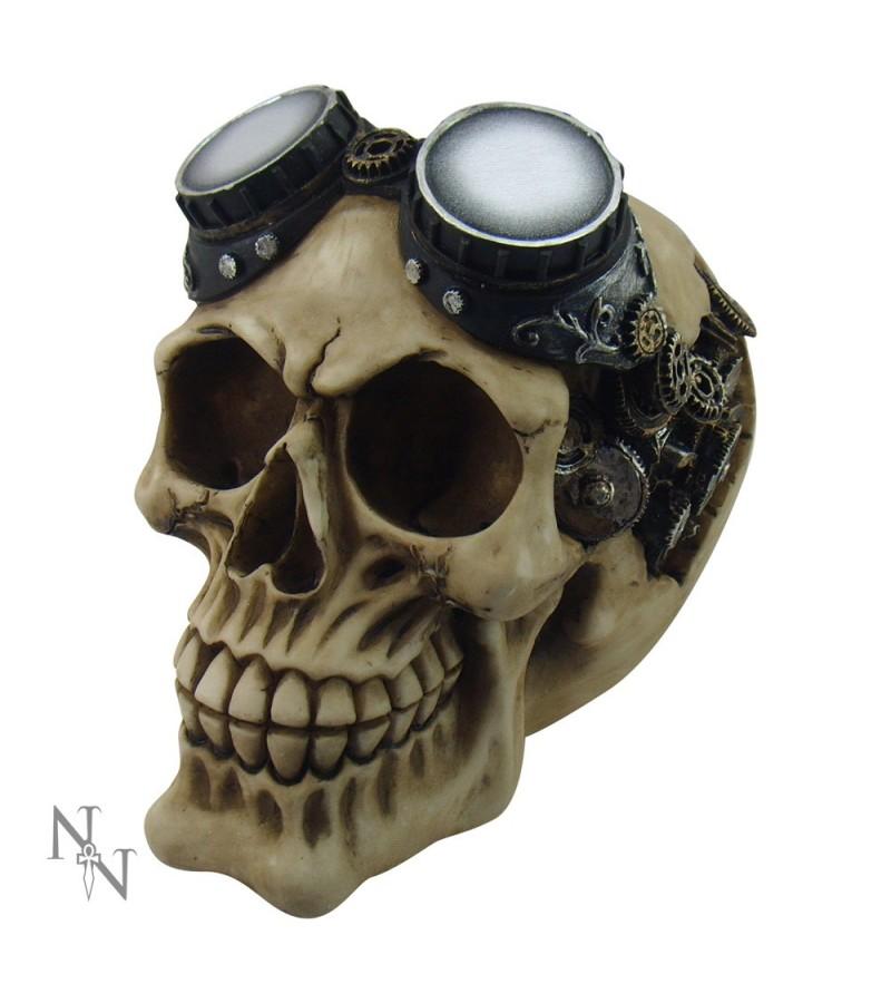 'Steampunk Goggles' Skull