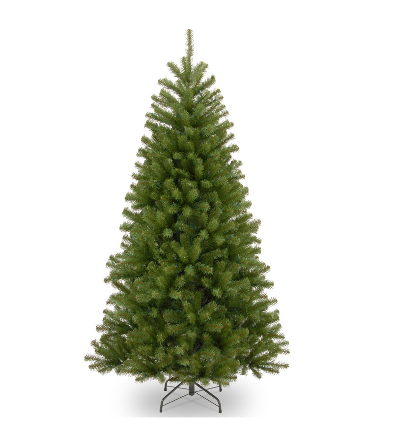 North Valley Spruce Tree - 8ft