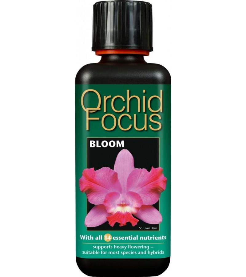 Orchid Focus Bloom - 100ml