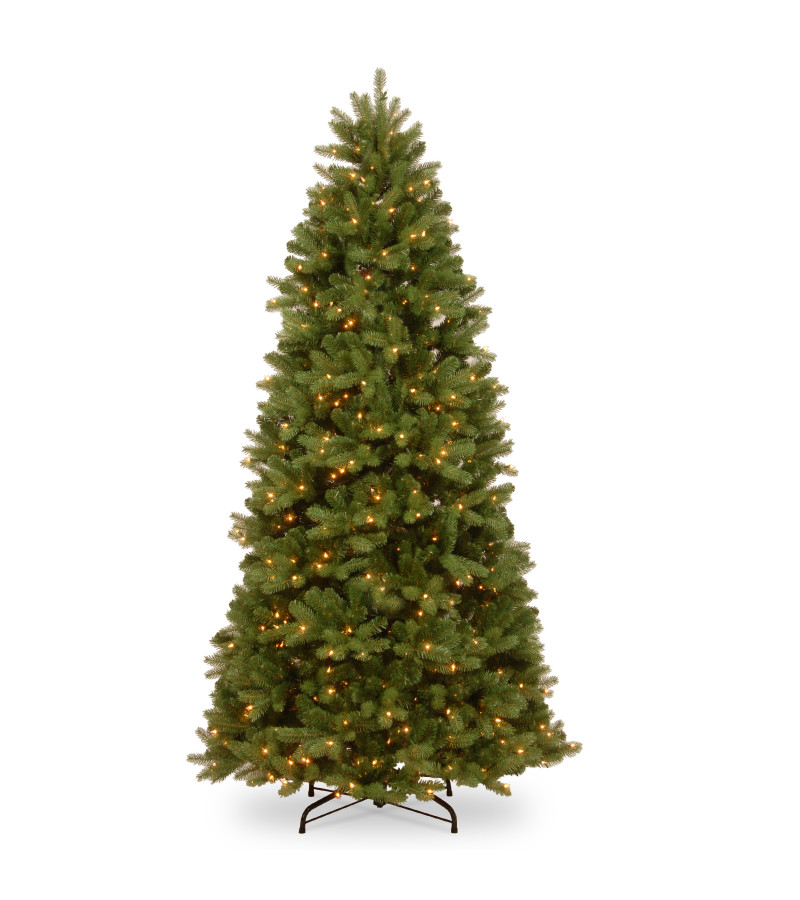 Newburgh Douglas Fir Tree (Pre Lit) - 6.5ft