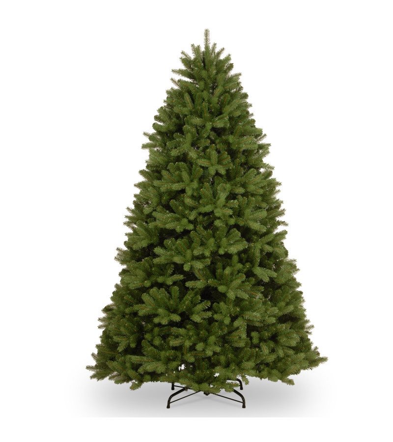 Newburgh Douglas Fir Tree - 6ft