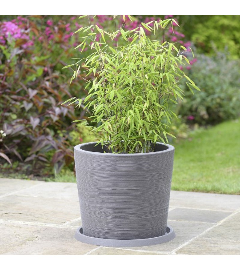 Stewart Varese Decorative Saucer - Grey (26cm)