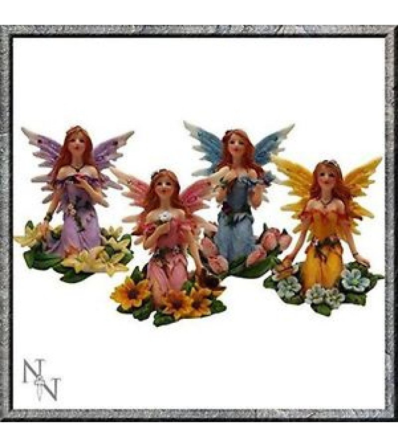 Woodland Fairy Wishes all colours