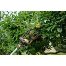 Kent & Stowe Telescopic Fruit Picker
