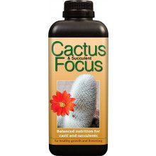 Cactus and Succulent Focus - 300 ml