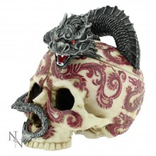 Eastern Dragon Skull Box 17cm