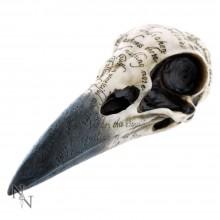 """""""Edgar's Raven"""" Skull"""
