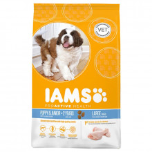 Iams Proactive health Puppy & Junior (Large) Dry Food - 12Kg