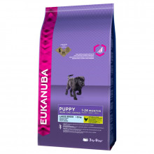 Eukanuba Puppy (Large Breed) Dry Food - 12Kg