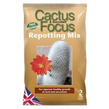 Cactus & Succulent Focus Repotting Mix - 2 Litres
