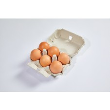 Farm House Eggs x 6