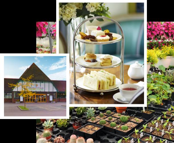 Pay us a visit Bradley Fold Garden Centre