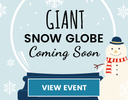 Giant Snow Globe in Store