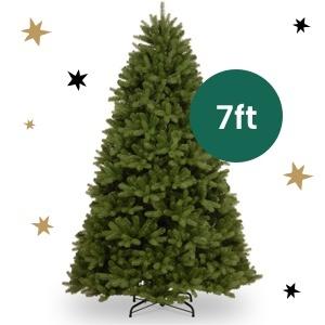 Newburgh Douglas Fir Tree - 7ft