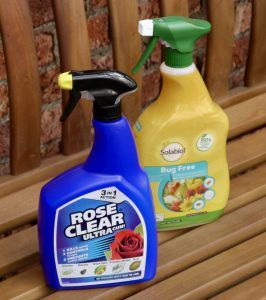 rose clear spray